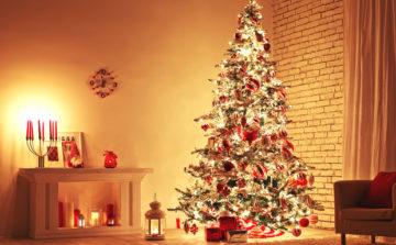 クリスマスにピッタリの香り🎄の画像